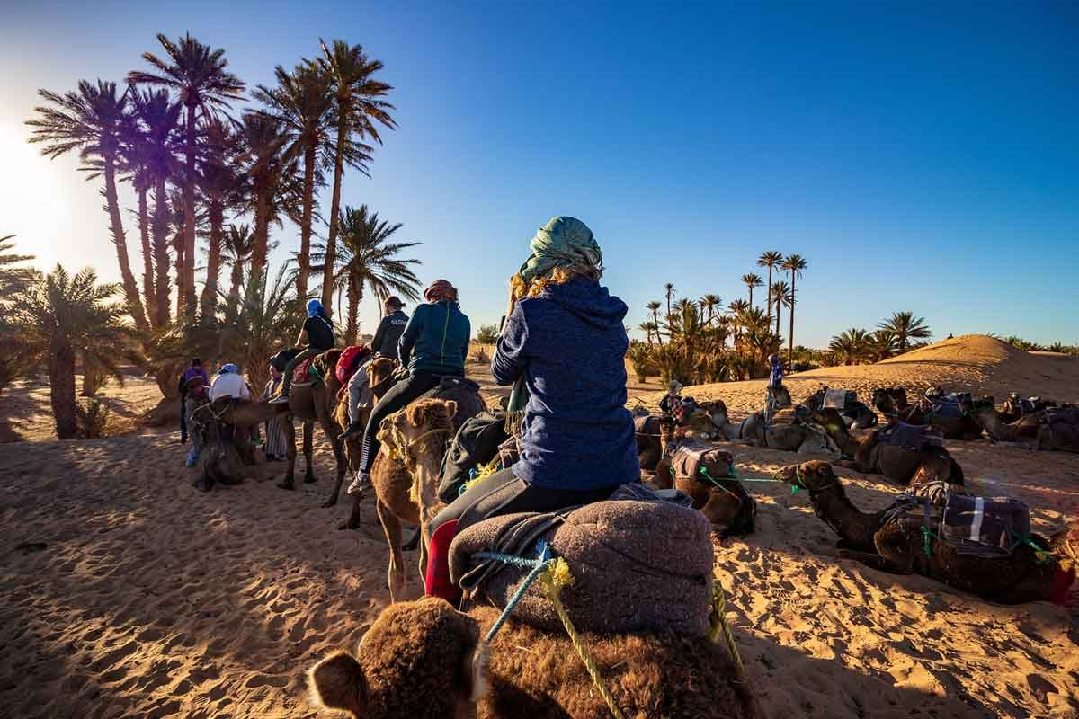 Photo of people riding camels in the Sahara desert